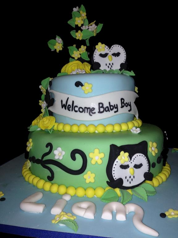 Two Tier Owl Baby Shower Cake