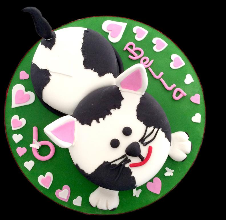 6th Childrens Birthday Cat Cake