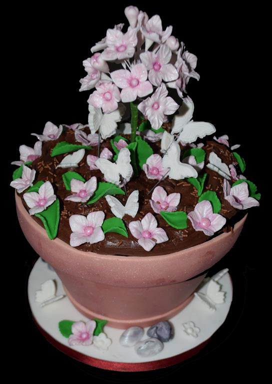 Potplant Novelty Birthday Cake